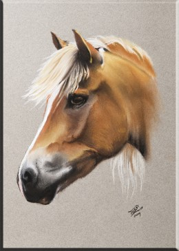 To the horse paintings